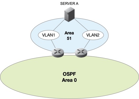 Anycast DNS using OSPF layout